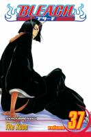 Bleach: Vol. 37, Beauty is so solitary