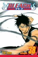 Bleach: Vol. 38 Fear for fight